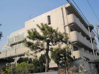 【外観】坂戸ダイカンプラザシティⅡ