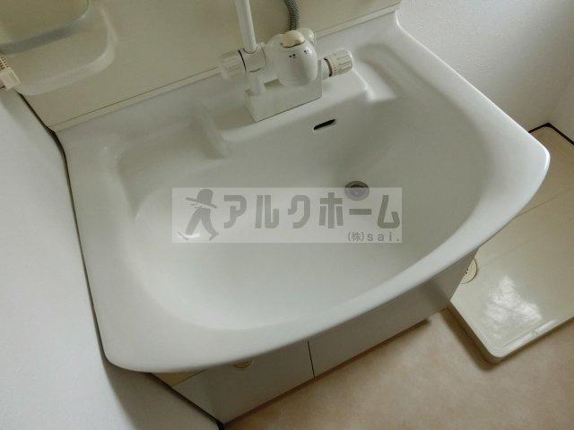 メゾンプチフォーレ(柏原市清州) 独立洗面台