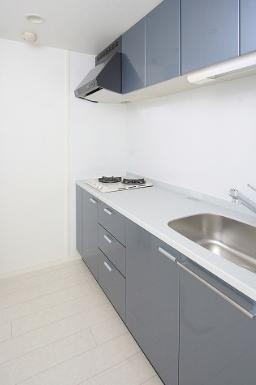 エンクレスト薬院Ⅱ(2K) キッチン