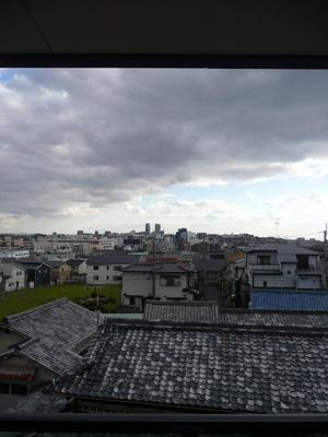 【展望】セルサスパール