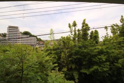 【展望】カーサベガ