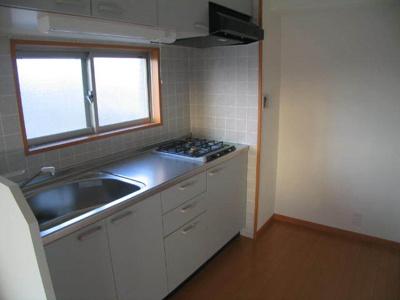 テラッツァ大濠(1LDK) キッチン