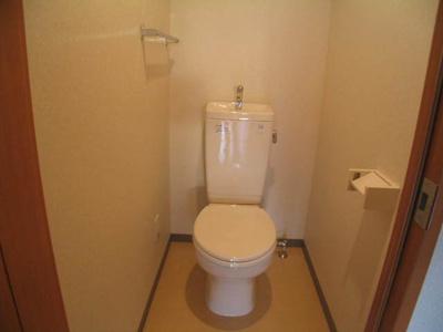 テラッツァ大濠(1LDK) トイレ