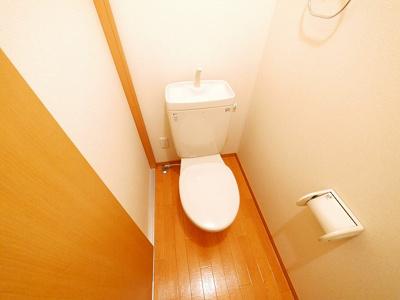 【トイレ】ドルフⅡ