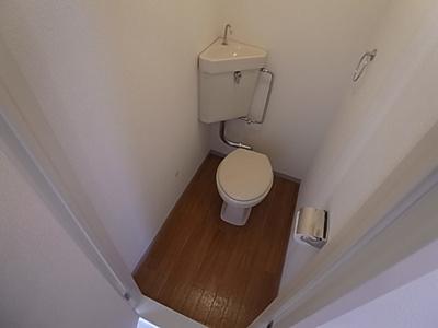【トイレ】メゾンシンデレラ