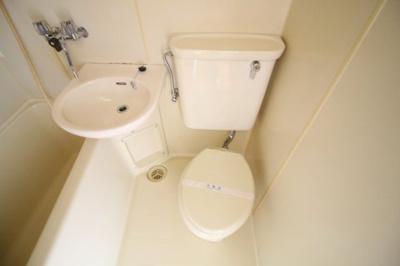 【トイレ】カサ水木
