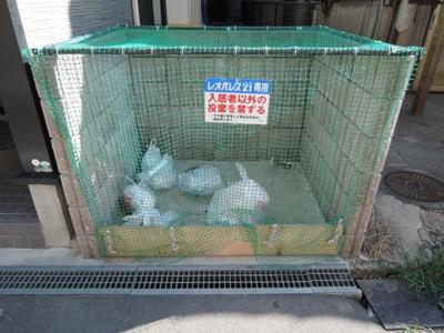 ☆ゴミ捨て場☆