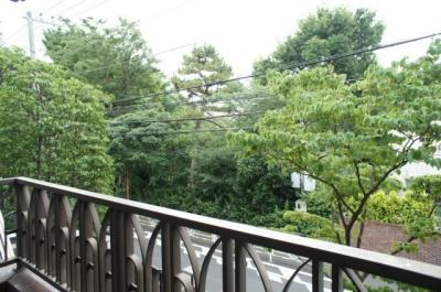 鍋島松濤公園の緑を一望