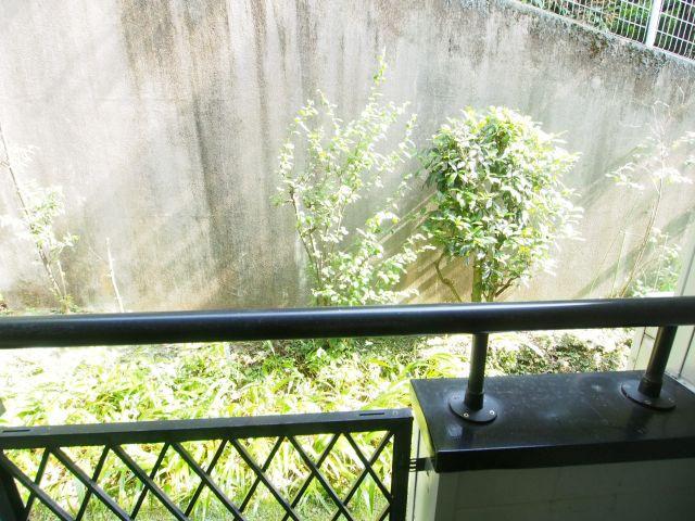フラット代々木上原 眺望は望めませんがグリーンが植えられていて爽やかですよ。