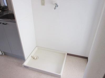 同型タイプ 洗濯機置場