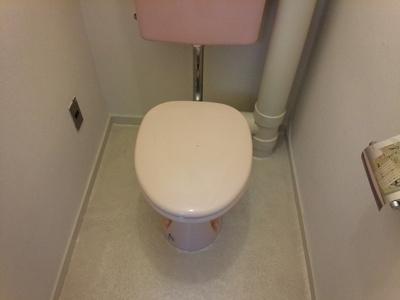 【トイレ】パインリーフ甲子園