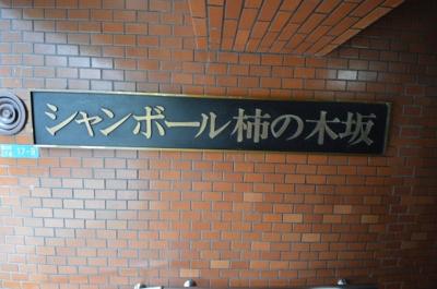 【その他共用部分】シャンボール柿の木坂