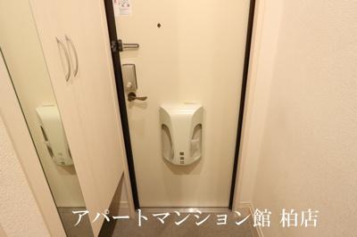 【玄関】アイビー