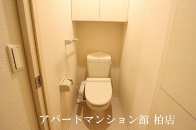 【トイレ】アイビー