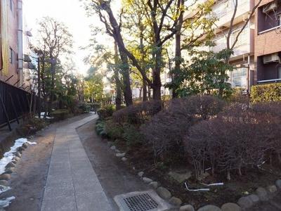 近隣の緑歩道