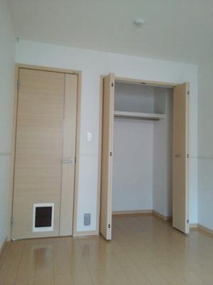 【玄関】カランコエ
