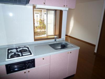 【キッチン】リッツハウスD