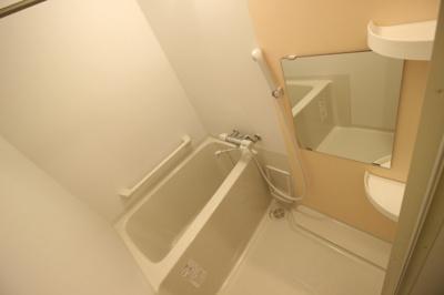 【浴室】レオネクスト稲田