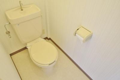 【トイレ】アイディル島泉