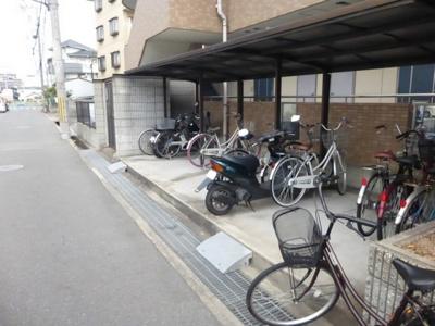 【駐車場】マツオマンションⅢ