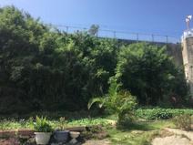 うるま市字具志川(57.47坪)の画像