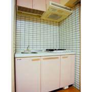 グラヴィス平尾(1LDK) キッチン