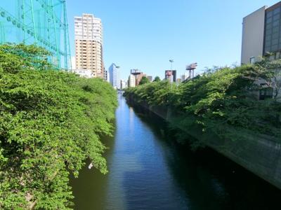 目黒川近し!