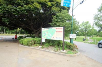 加曽利貝塚公園はクヌギの森。カブトムシも採れますよ。