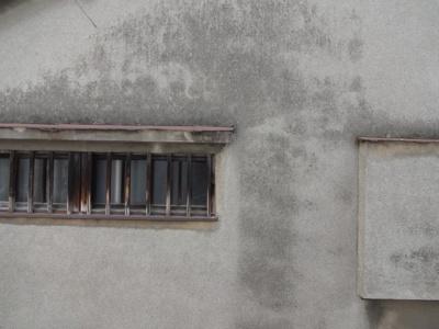 和室のもう一方の窓からの景色