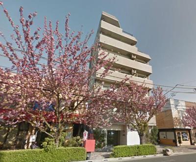 桜の季節が待ち遠しい住まいですね。