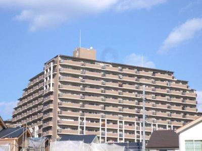 13階建ての大型分譲マンション★
