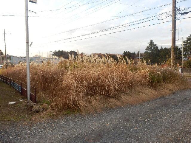 【外観】城里町石塚土地