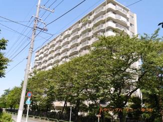閑静な住環境に建つ、住環境豊かな総戸数186戸のビッグコミュニティマンションです。