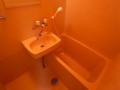 【浴室】ウィルネス三界