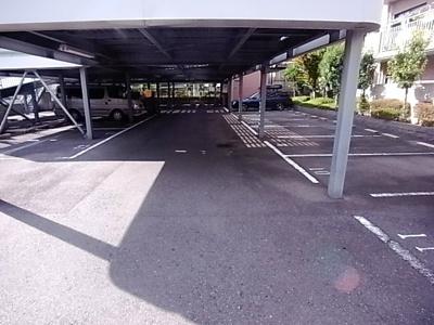 【駐車場】エコーハイツ