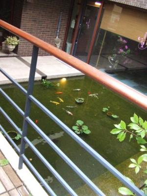 階下には池
