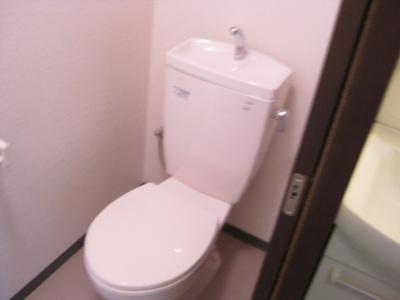 【トイレ】リュストル平野