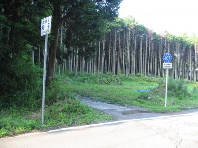 県道からの進入口