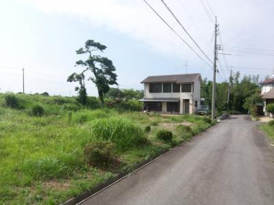 【前面道路含む現地写真】大山町西坪 売り土地
