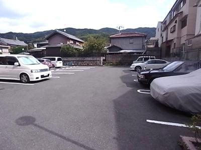 【駐車場】ナイル良