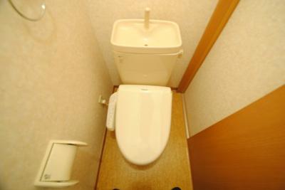 【トイレ】フォルトゥーナ花畑