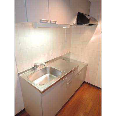 サングリーン新宿のキッチン2