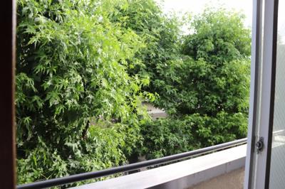 洋室5帖からの眺望