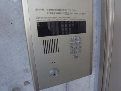 【セキュリティ】フラットカキノキ