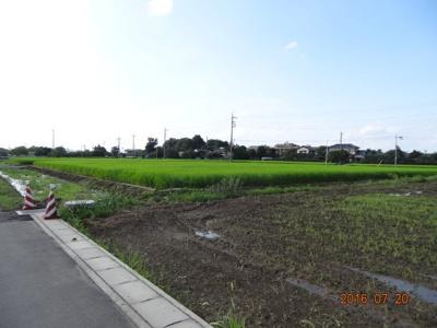 【展望】加須市大越 新築分譲住宅全11棟
