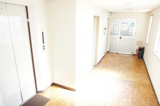 ゆったりとした明るい共用廊下・エレベーターホールです。