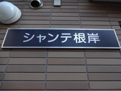 【エントランス】シャンテ根岸