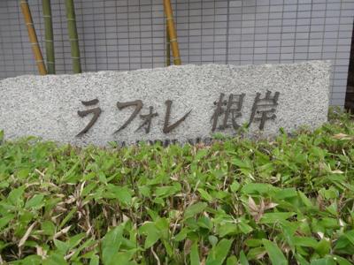 【エントランス】ラ・フォレ根岸
