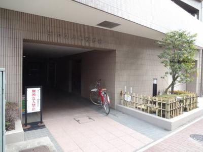 【エントランス】ピロス上野松が谷
