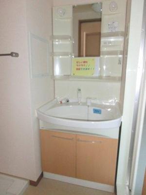 シャンプードレッサー 室内洗濯機置場あり